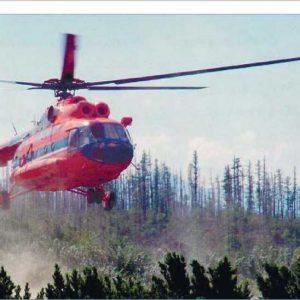 Авиация - безальтернативный вид транспорта для отдалённых северных и восточных регионов России.